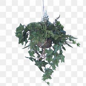 Anthurium Christmas Decoration - Christmas Decoration PNG