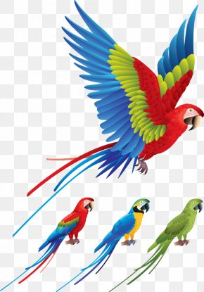 Colored Birds Flying - Parrot Bird Red-and-green Macaw Clip Art PNG