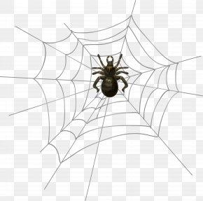 Halloween Spider Web Clip Art - Spider Halloween Clip Art PNG