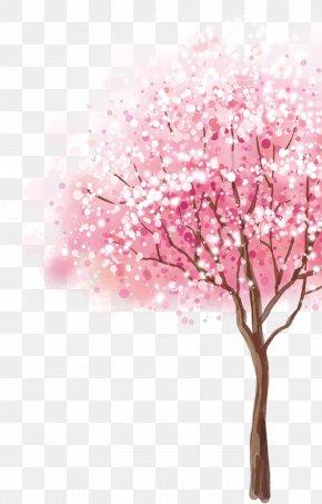 Cherry Tree - Cherry Blossom Cerasus Tree PNG