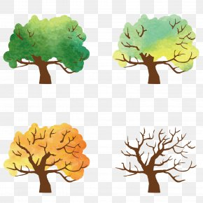 Spring And Summer Autumn And Winter Trees - Season Spring Download PNG