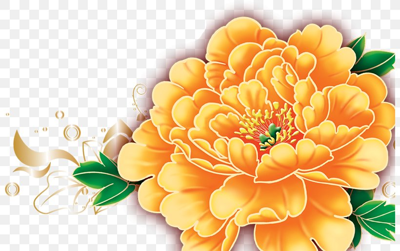 Mid-Autumn Festival Moutan Peony Change National Day Of The Peoples Republic Of China, PNG, 800x514px, Midautumn Festival, Annual Plant, Change, Chrysanths, Cut Flowers Download Free