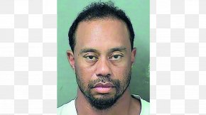 Tiger Woods - Tiger Woods Florida The US Open (Golf) Arrest PNG