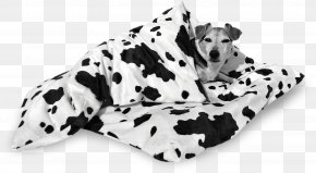 The Dog Flies The Frisbee - Dalmatian Dog Dog Breed Duvet Non-sporting Group PNG
