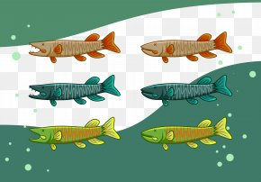 Fish Collection - Text Marine Biology Fish Fauna Illustration PNG