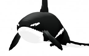 Animation Moving Pictures - Computer Mouse Toothed Whale Blue Whale Killer Whale PNG