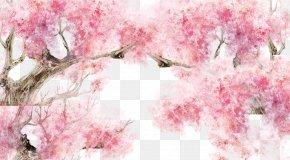 Cherry Blossoms,petal - Cherry Blossom Pink Petal PNG