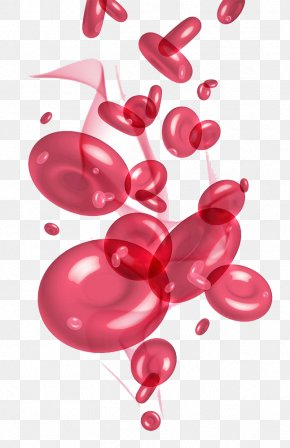 Lovely Red Blood Cell Graphics - Red Blood Cell Blood Plasma Platelet PNG