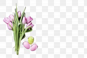 Lily Family Chives - Flower Plant Cut Flowers Tulip Petal PNG