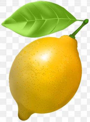 Lemon Transparent Clip Art - Lemon Clip Art PNG