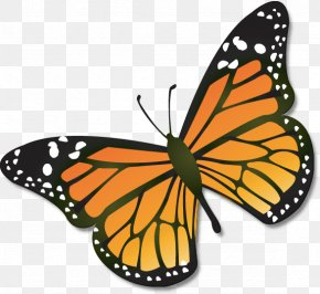 Cartoon Monarch Butterfly - Monarch Butterfly Insect Clip Art PNG