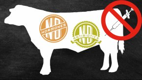 Cattle Images - Jersey Cattle Beef Hormone Controversy Milk Clip Art PNG