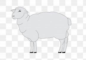 Sheep - Sheep Cattle Goat Horse Mammal PNG
