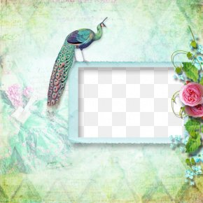 Peacock Green Background Frame - Picture Frame Peafowl Bordiura PNG
