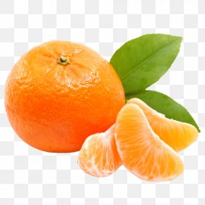 Tangerine - Juice Tangerine Ugli Fruit Orange PNG