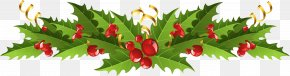 Transparent Christmas Mistletoe Decor Picture - Mistletoe Christmas Decoration Common Holly Clip Art PNG