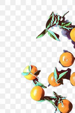 Kumquat Valencia Orange - Orange PNG