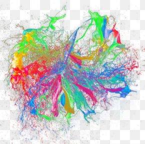 Paint Splatter - Color Pigment Painting PNG