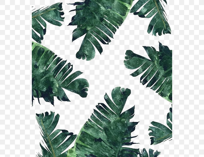 Banana Leaf Canvas Print Watercolor Painting Wallpaper, PNG, 564x630px, Paper, Art, Banana, Banana Leaf, Canvas Download Free