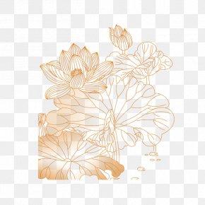 Lotus - Petal Floral Design Flower Pattern PNG