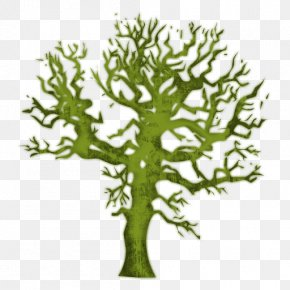 Magical Tree Cliparts - Bumper Sticker Amazon.com Decal Waste Recycling PNG