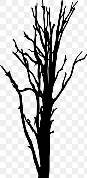Silhouette - Twig 3D Computer Graphics Clip Art PNG