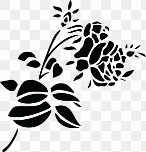 Black And White - Black And White Clip Art PNG