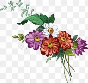 Chrysanthemum - Flower Euclidean Vector Clip Art PNG