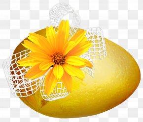 Easter - Easter Egg Holiday Resurrection Of Jesus Christmas PNG
