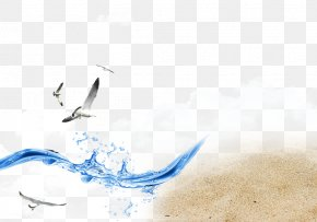 Seagull Beach Waves Spray - Web Template Wind Wave PNG
