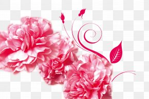 Red Peony - Mothers Day Gratitude Advertising Carnation PNG