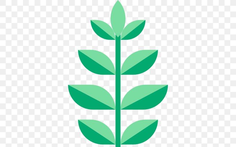 Leaf Green Plant Stem Font, PNG, 512x512px, Leaf, Flower, Grass, Green, Plant Download Free