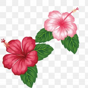 Red Flowers - Royalty-free Flower Tropics Clip Art PNG