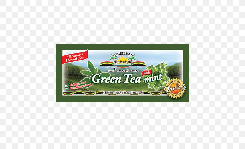 Plant Brand, PNG, 500x500px, Plant, Brand, Grass, Herbal Download Free