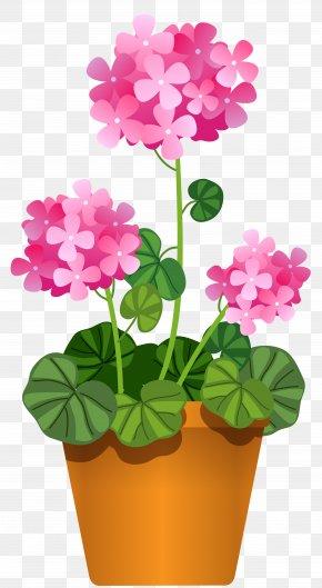 Flower - Clip Art: Transportation Vector Graphics Illustration Flowering Pot Plants PNG