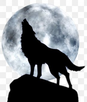 Full Moon Howl - Dog Arctic Wolf Three Wolf Moon T-shirt PNG