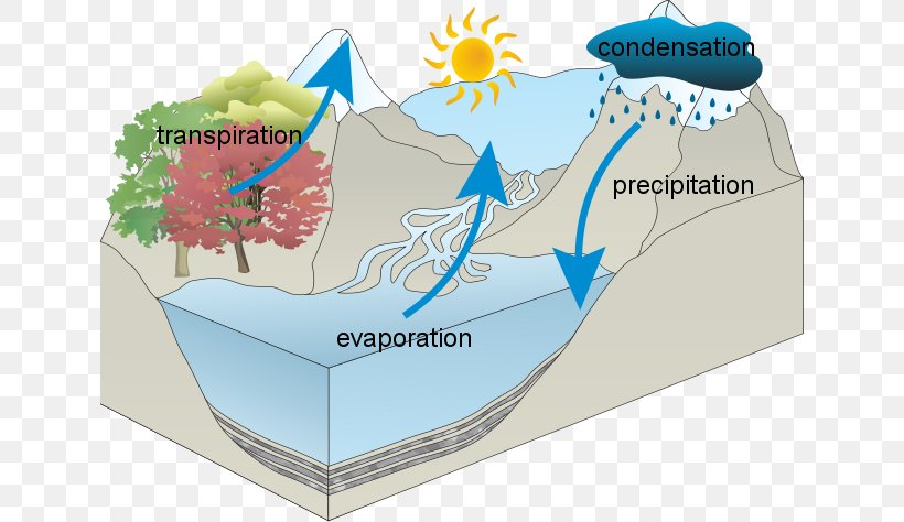 Water Cycle National Secondary School
