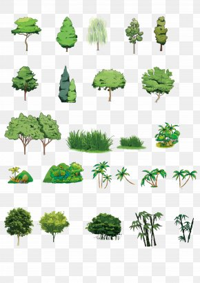 Hand-painted Plants - Download Tree Computer File PNG