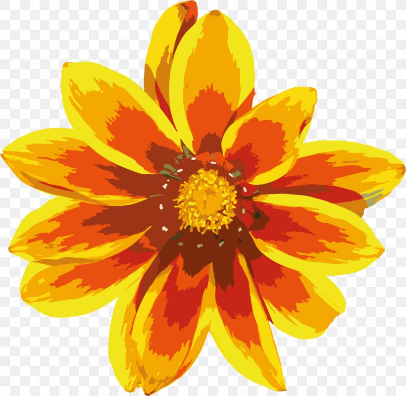 Common Sunflower Calendula Officinalis Yellow, PNG, 1144x1117px, Common Sunflower, Annual Plant, Calendula, Calendula Officinalis, Chrysanths Download Free