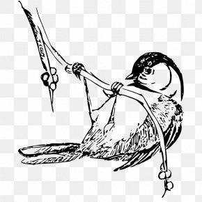 Public Domain Line Art - Bird Black-capped Chickadee Drawing Clip Art PNG
