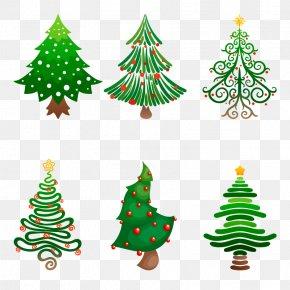 Vector Christmas Tree - Christmas Tree Christmas Ornament Fir PNG