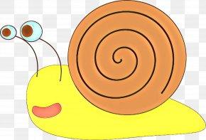 Spiral Sea Snail - Snail Cartoon PNG