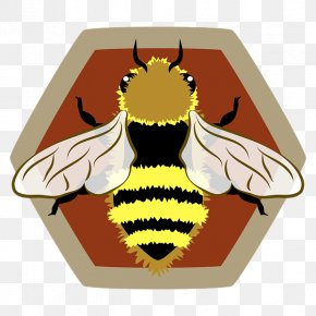 Western Honey Bee - Western Honey Bee Honeycomb Beehive Africanized Bee PNG