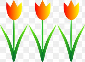 Spring Border - Flower Garden Clip Art PNG