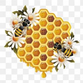 Honey - Western Honey Bee Beehive Bumblebee Clip Art PNG