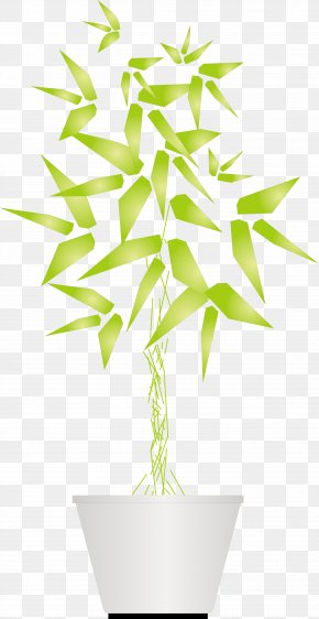 Vector Facade Green Potted Bamboo Decorations - Facade Bamboe Bamboo Euclidean Vector PNG