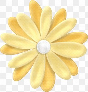 Flower - Flower Drawing Petal Clip Art PNG