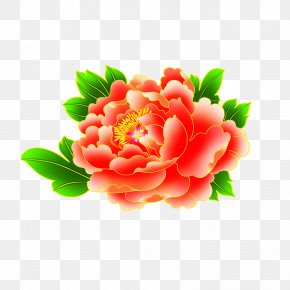 Peony - Rosa Chinensis Moutan Peony Mudan District Paeonia Lactiflora PNG