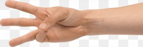 Hands Hand Image - Hand Thumb PhotoScape PNG