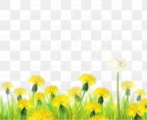 Transparent Grass With Dandelions Clipart - Dandelion Clip Art PNG